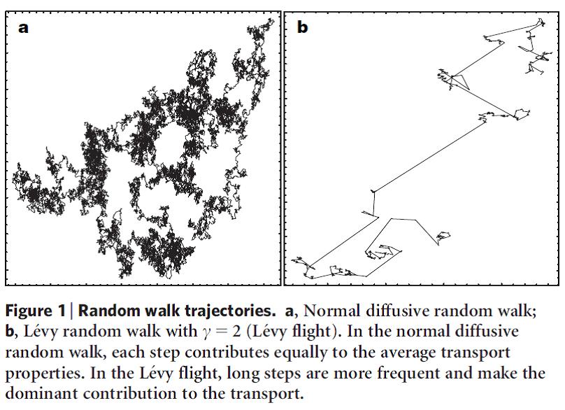 Figure 1. The description is in the caption.