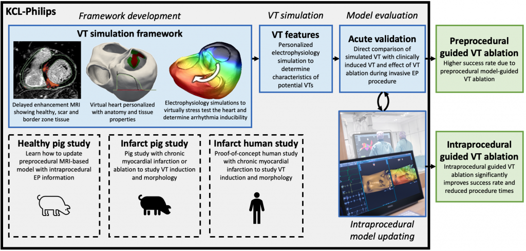 Framework for the development of cardiac digital twin computational models which maybe automatically-updated with intra-procedure measurements, utilising mapping systems. Subsequent use of optimised cardiac models will allow for accurate and beneficial pre-procedure and in procedure planning, increasing success and reducing risk of VT ablation procedures.